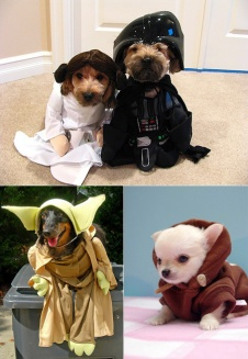 star-wars-animals - copia