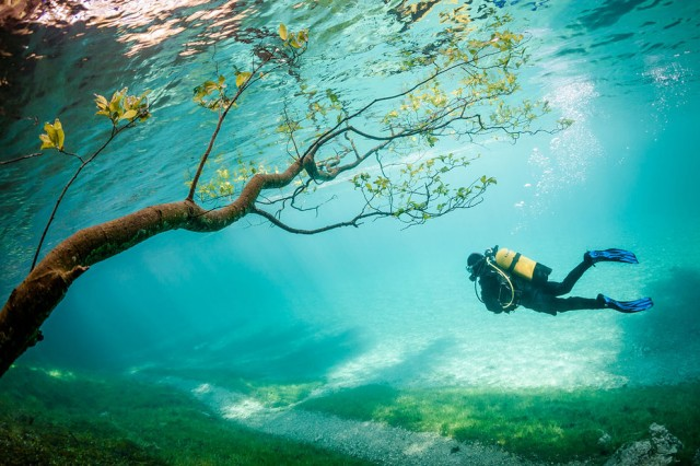 National-Geographic-Photo-Contest-Winners-20143-640x426